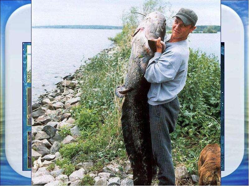 Сертификат на рыбалку в уфе