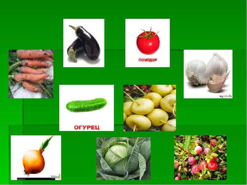 ПОЛЕЗНАЯ АЗБУКА ПИТАНИЯ Проблема: не всегда умеем правильно выбирать продукты для здорового питания (не знаем о пользе ов, слайд 6