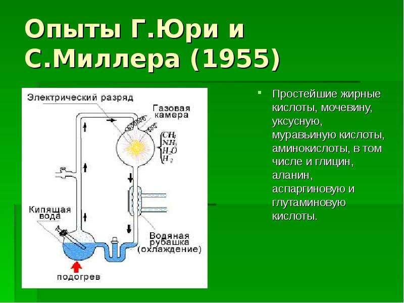 Гипотеза происхождения жизни