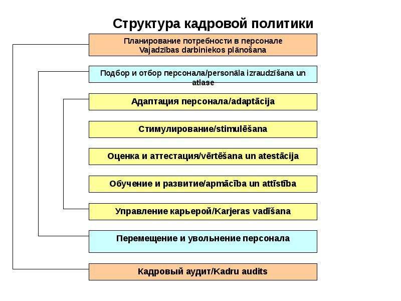 Аудит Персонала Организации