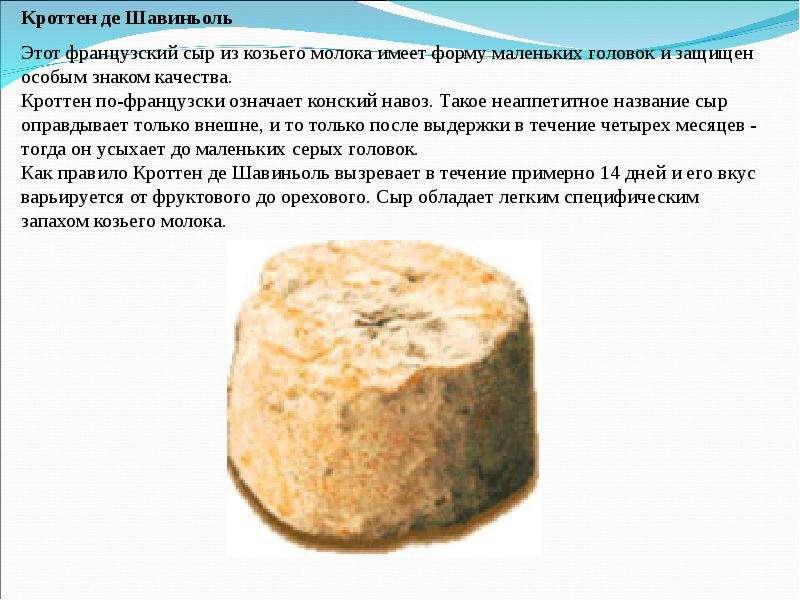 Рецепт изготовление козьего сыра в домашних условиях 532