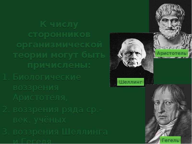 К числу сторонников организмической теории могут быть причислены: Биологические воззрения Аристотеля