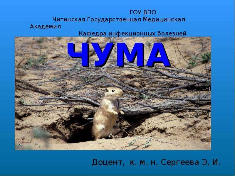 ЧУМА Доцент, к. м. н. Сергеева Э. И.