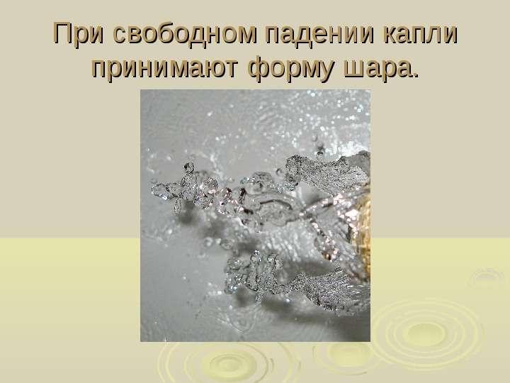 мурзенко фото