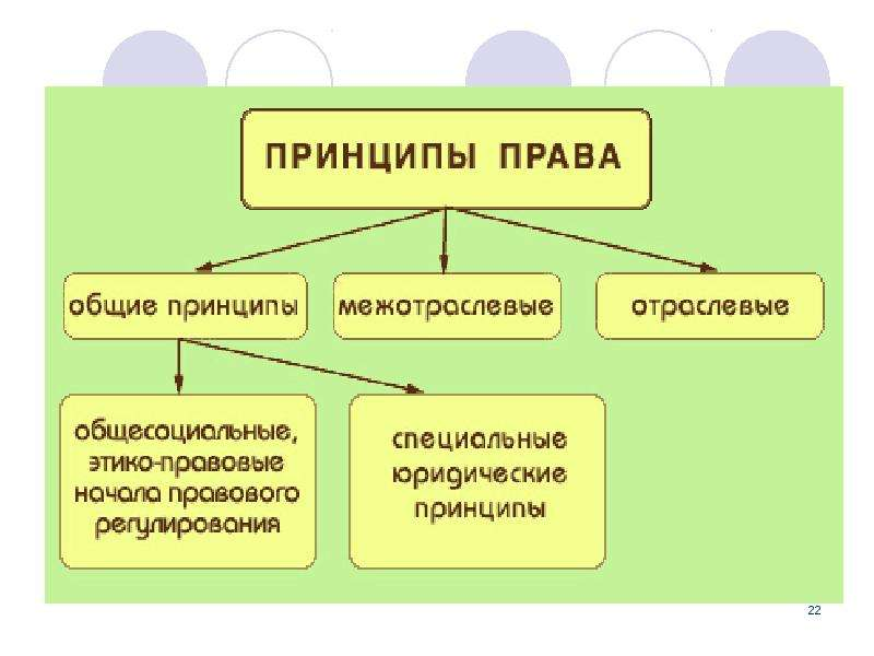 Принципы права понятие и классификация шпаргалка по тгп