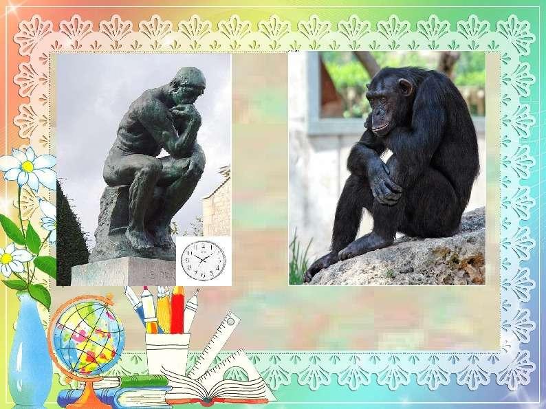 Педагогический совет « Активные и интерактивные методы обучения на уроках общественных дисциплин», слайд 8