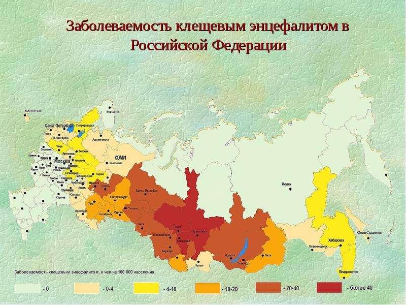 Клещевой энцефалит карта