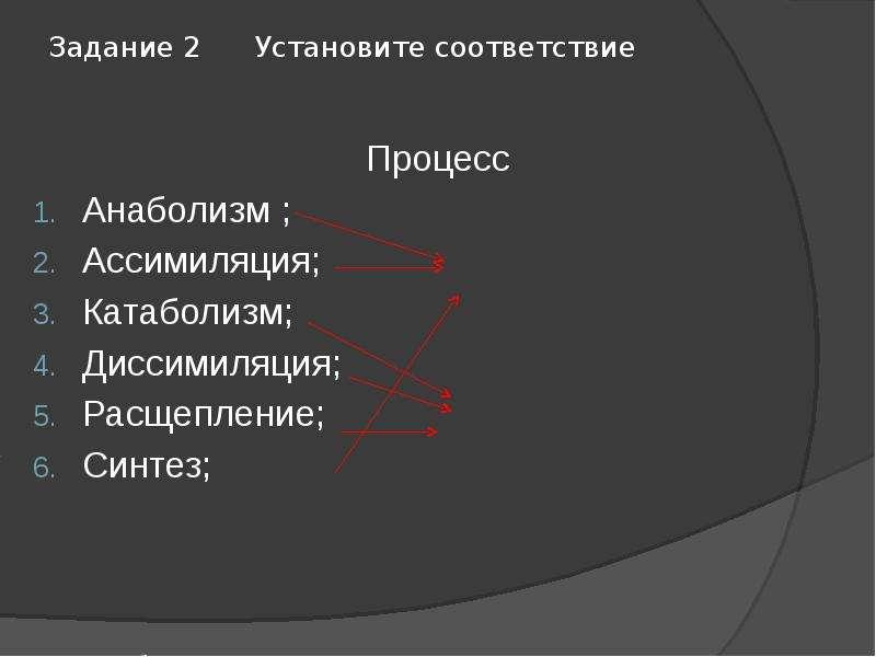 Задание 2 Установите соответствие Процесс Анаболизм ; Ассимиляция; Катаболизм; Диссимиляция; Расщепл