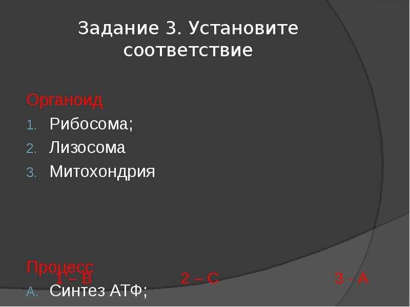 Задание 3. Установите соответствие Органоид Рибосома; Лизосома Митохондрия Процесс Синтез АТФ; Синте