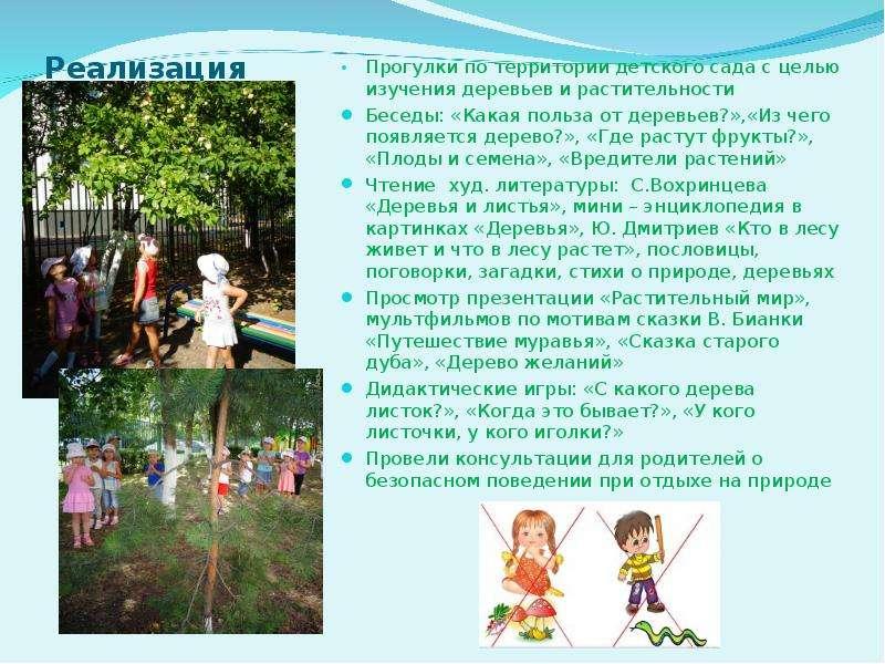 Как сделать паспорт участка в детском саду