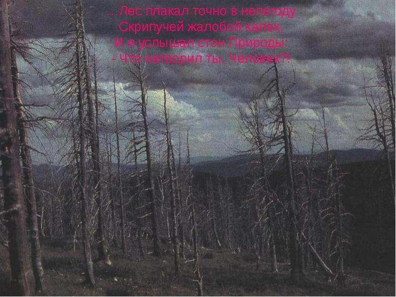 Нельзя допустить, чтобы люди направляли на свое уничтожение те силы природы, которые они сумели открыть и покорить. Нельзя допус, слайд 8
