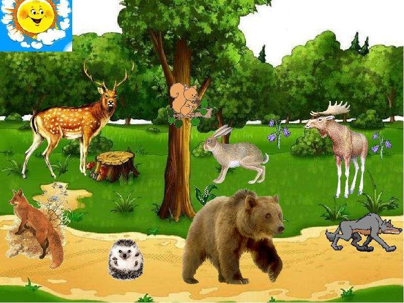 Картинки для презентации дикие животные для детей