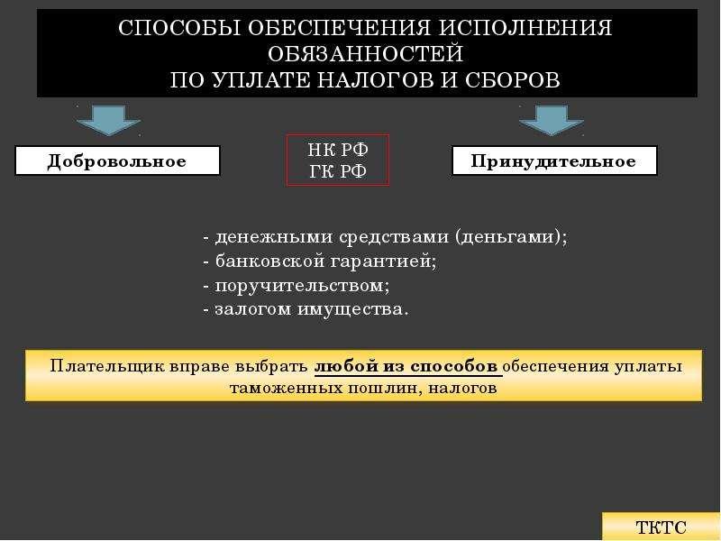 Обеспечение уплаты таможенных пошлин, налогов Подготовила: Лепичева Наталия, слайд 10