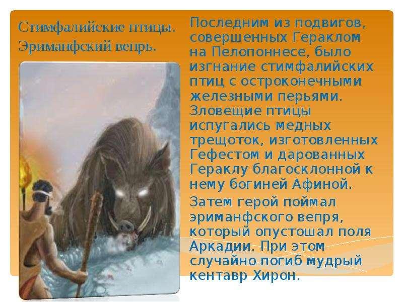 Стимфалийские птицы. Эриманфский вепрь. Последним из подвигов, совершенных Гераклом на Пелопоннесе,
