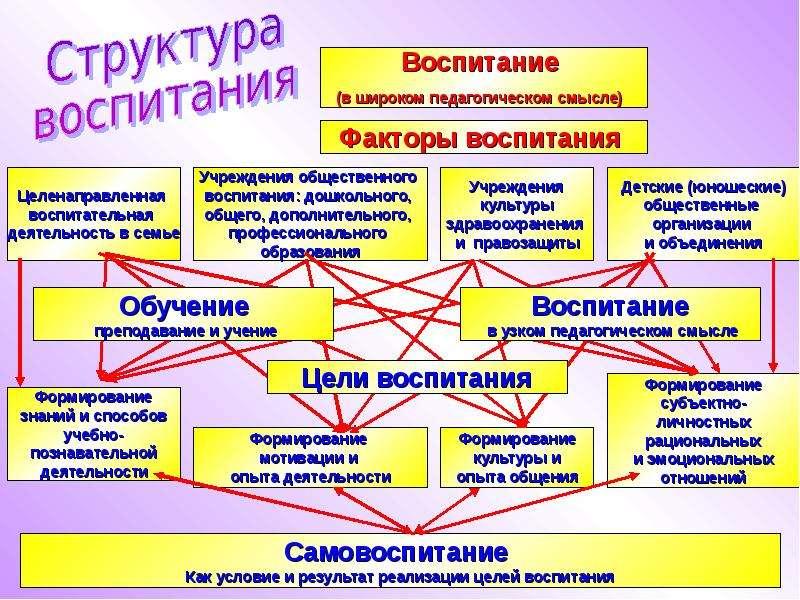 Особенности Современной Школы Как Воспитательной Организации Шпаргалка