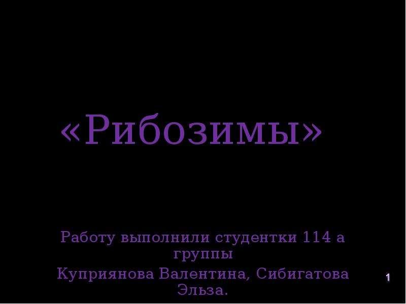 Рибозим