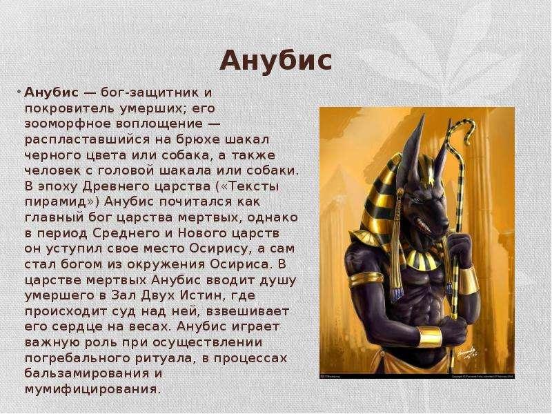 Анубис Анубис — бог-защитник и покровитель умерших; его зооморфное воплощение — распластавшийся на б