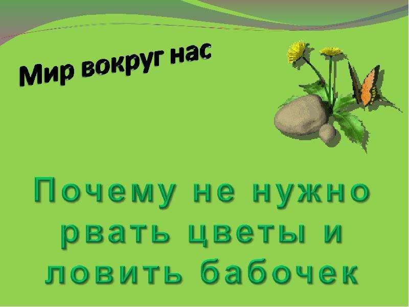 презентация на тему почему нельзя рвать цветы и ловить бабочек
