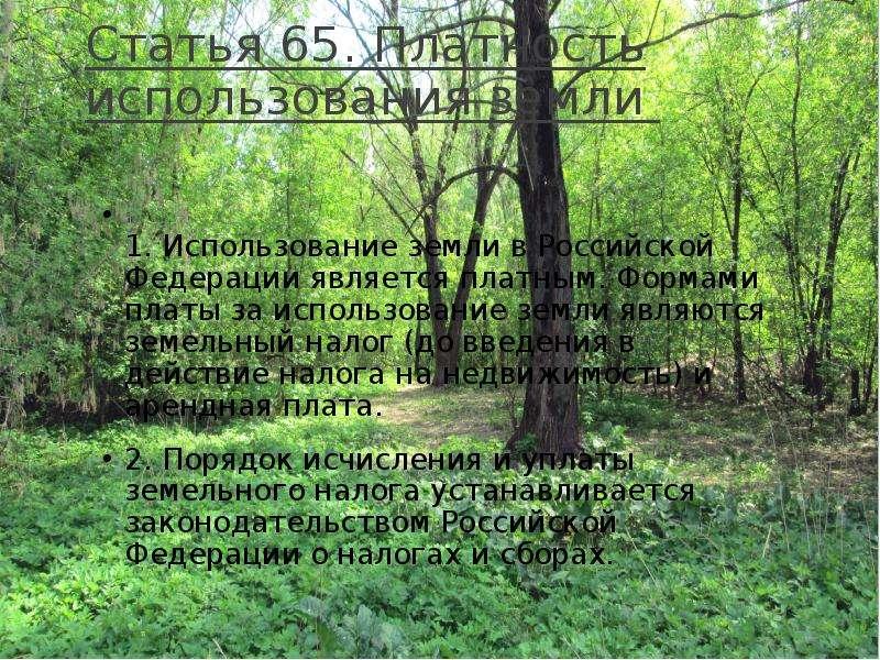 Статья 65. Платность использования земли 1. Использование земли в Российской Федерации является плат
