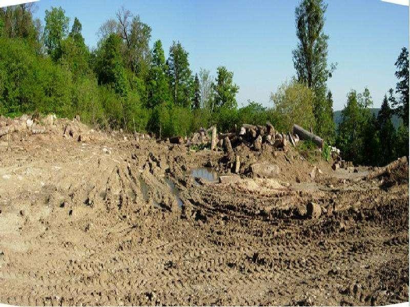 Платность использования земли и оценка земли Выполнила: Максимова Ольга, слайд 6