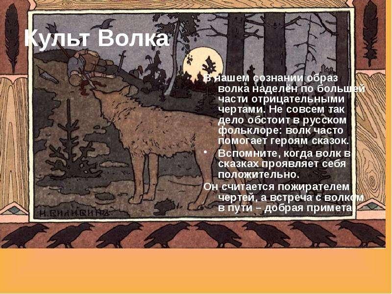 Культ Волка В нашем сознании образ волка наделён по большей части отрицательными чертами. Не совсем