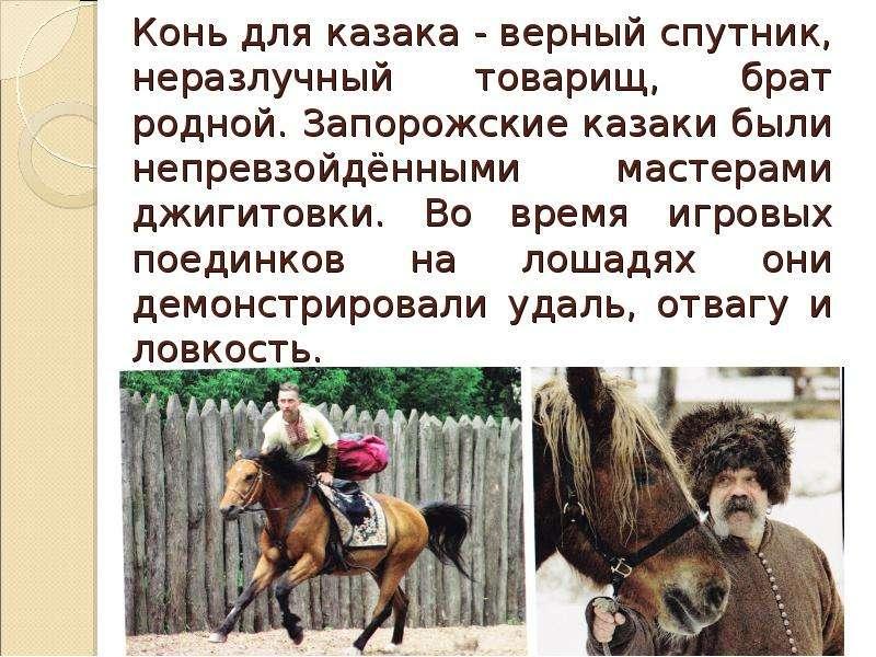Конь для казака - верный спутник, неразлучный товарищ, брат родной. Запорожские казаки были непревзо