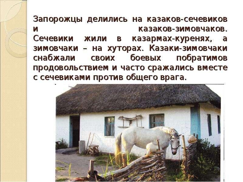 Запорожцы делились на казаков-сечевиков и казаков-зимовчаков. Сечевики жили в казармах-куренях, а зи