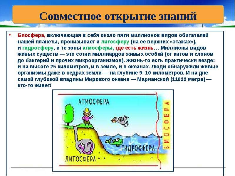 Биосфера, включающая в себя около пяти миллионов видов обитателей нашей планеты, пронизывает и литос