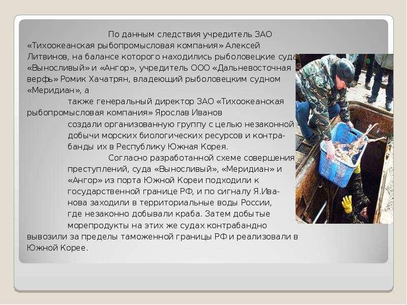 По данным следствия учредитель ЗАО «Тихоокеанская рыбопромысловая компания» Алексей Литвинов, на бал