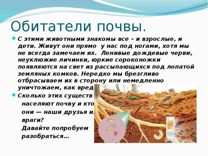 Доклад на тему Животные в почве скачать презентацию Описание слайда Обитатели почвы
