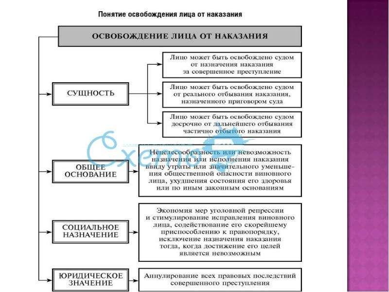На тему Виды правонарушений в государственном управлении и их предупреждение, слайд 13