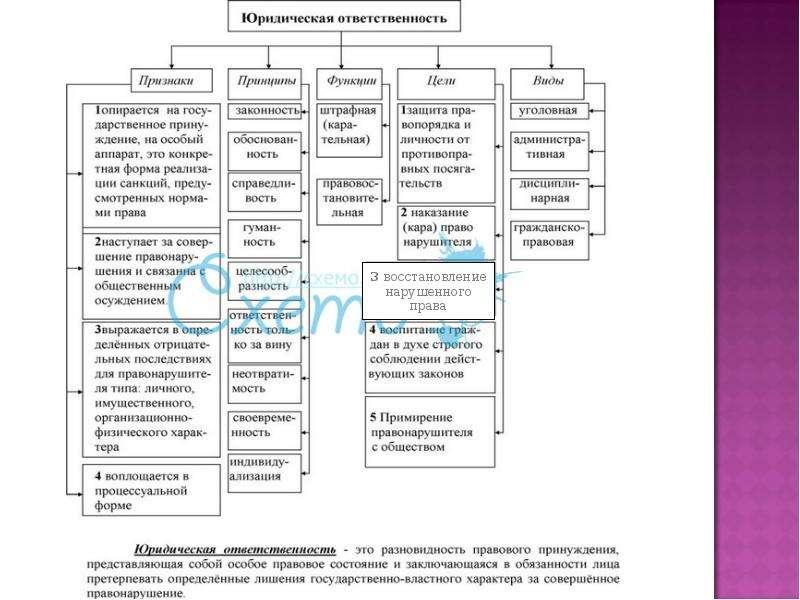 На тему Виды правонарушений в государственном управлении и их предупреждение, слайд 14