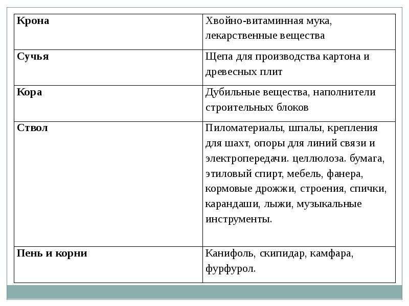 Леса России ДАВНО ПОРА БЫ ВОЗДАТЬ ЕМУ ХВАЛУ, КАКОЙ ЗАСЛУЖИВАЕТ ЭТОТ МИЛЫЙ ДЕД, СТАРИННЫЙ ПРИЯТЕЛЬ НАШЕГО ДЕТСТВА, НАСМЕРТЬ СТОЯВ, слайд 14