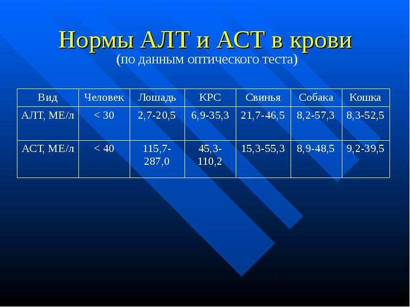 Аст анализ норма кровь крови mch hct mchc rbc анализ