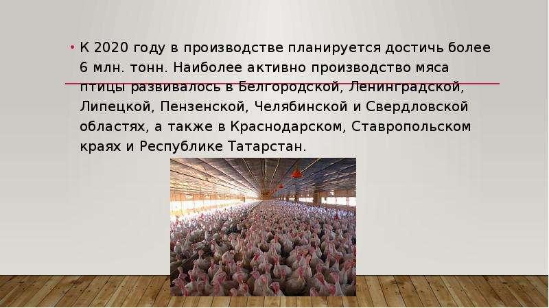 К 2020 году в производстве планируется достичь более 6 млн. тонн. Наиболее активно производство мяса