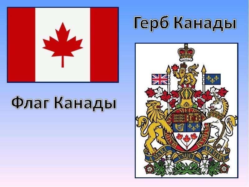 модные тенденции редкие значки с изображением канадского герба тому духи