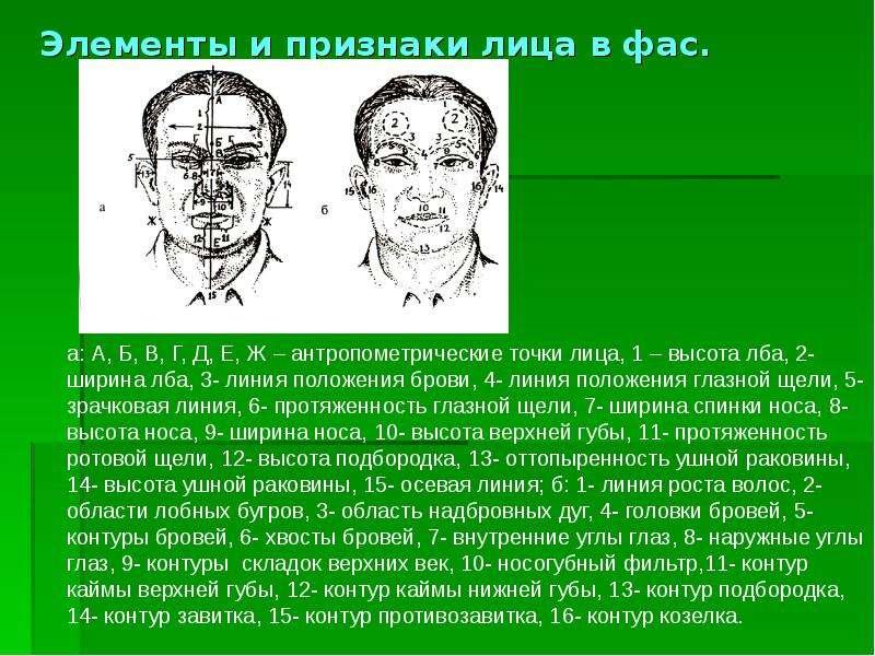 сроки Новости криминалистическое исследование внешних признаков человека габитоскопия это