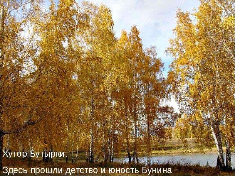 В мастерской художника слова: И. А. Бунин «Лапти»., рис. 3