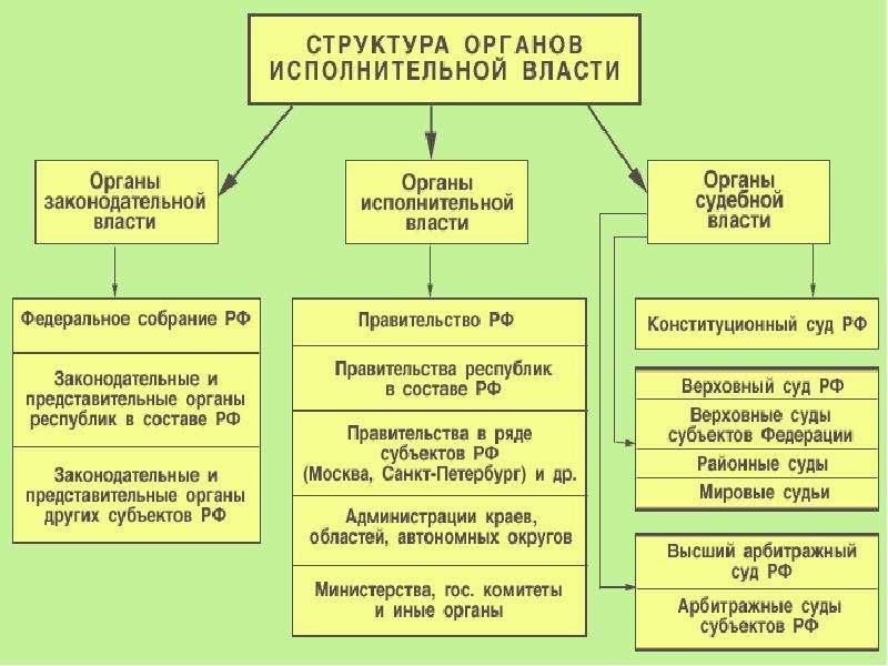 как устроены органы власти