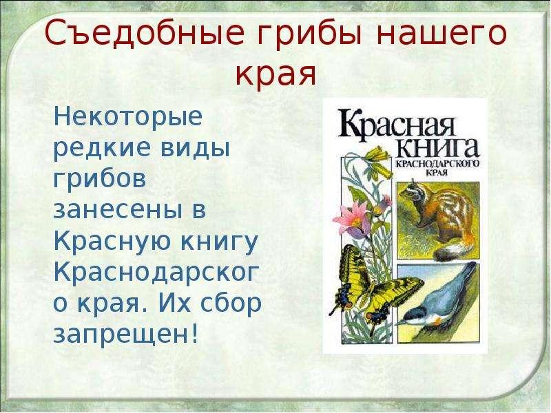 Съедобные грибы нашего края Некоторые редкие виды грибов занесены в Красную книгу Краснодарского кра
