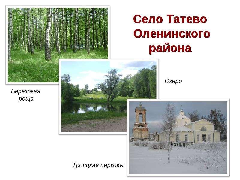 Село Татево Оленинского района