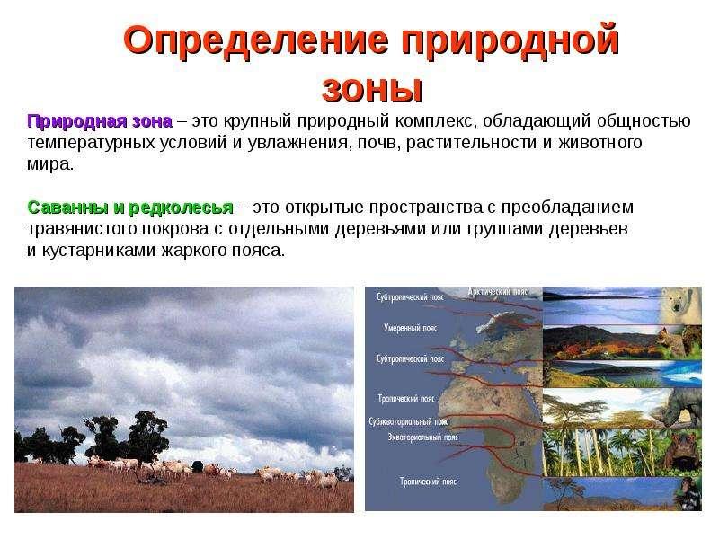 Определение природной зоны