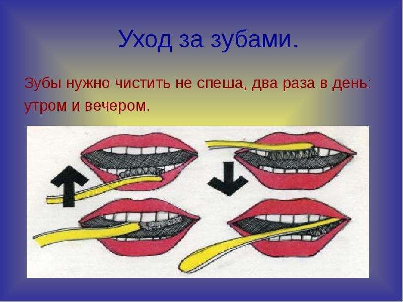 Уход за зубами. Зубы нужно чистить не спеша, два раза в день: утром и вечером.