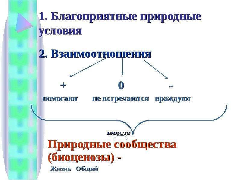 1. Благоприятные природные условия 2. Взаимоотношения + 0 - помогают не встречаются враждуют Природн