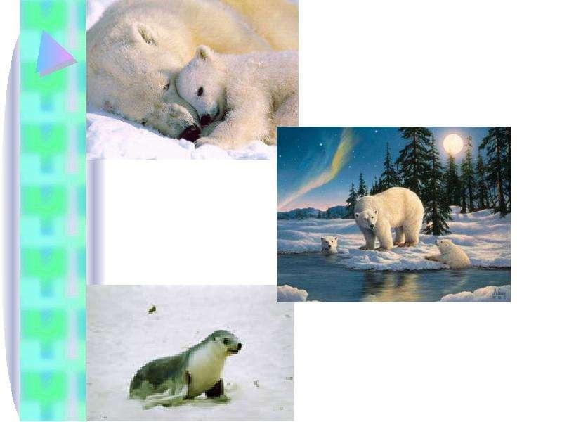 Тема урока: Природное сообщество. Экосистема. Цель: Сформировать понятие о природном сообществе и экосистеме Выяснить причины,, слайд 3