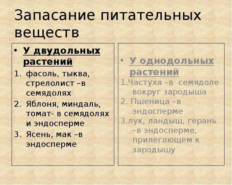 Пирог с капустой и рыбой рецепт с фото пошагово