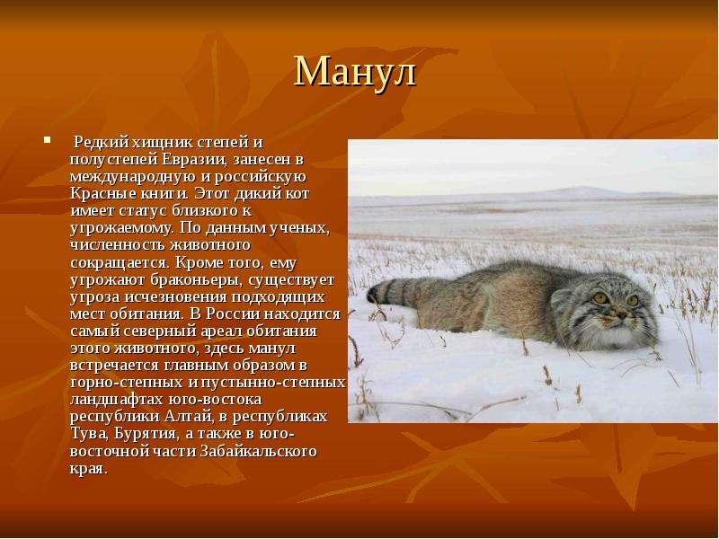 Животные занесенные в красную книгу пермского края фото
