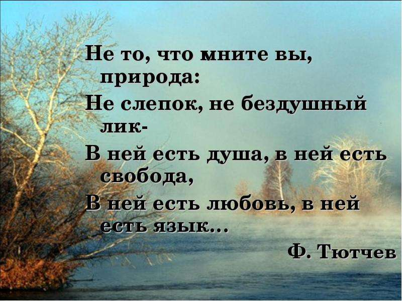 Характеристики и описание о русские поэты о природе