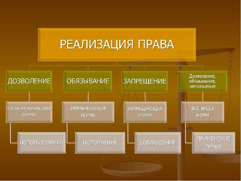 реализации шпаргалку на свободу наити механизм мнения права выражения определите