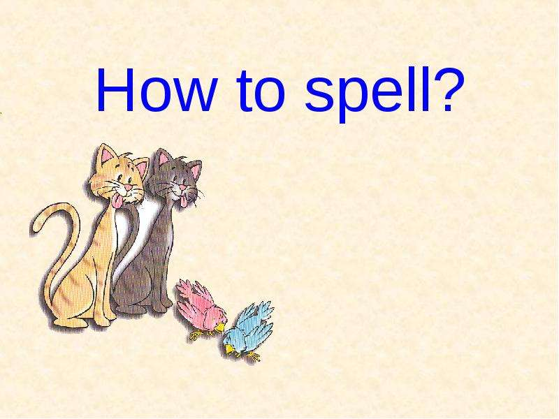 The Spell of Language
